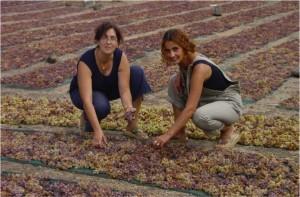 Sara and Ketty D'Ancona